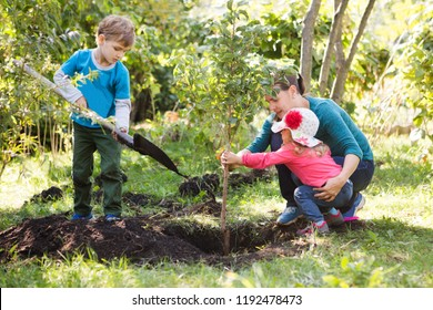 Mother and two children brother and sister planting tree in a garden.