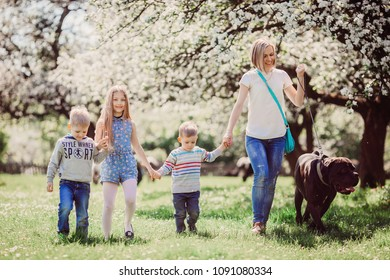 The mother,children and dog walking along park