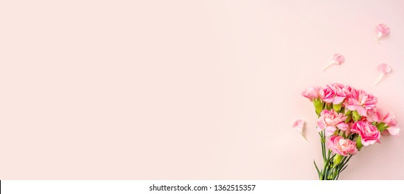 mothers day design concept - top view of a bunch of carnation on pink background for mothers day, wedding and valentines day with copy space for mock up