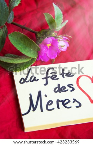 Mothers Day French La Fete Des Stock Photo Edit Now 423233569