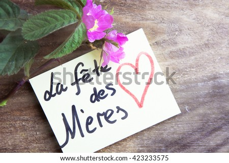 Mothers Day French La Fete Des Stock Photo Edit Now 423233575