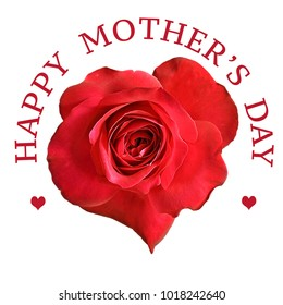 Mothers Day greeting with red rose flower on white background