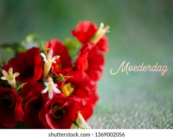 Mothers Day image. Red flowers on a green background. The word Dutch word Moederdag means Mothers Day.