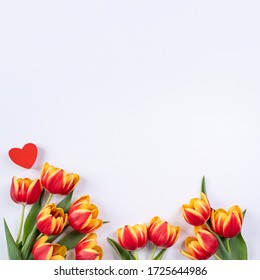 Mother's Day, Valentine's Day background, tulip flower bunch - Beautiful Red, yellow bouquet isolated on white table, top view, flat lay, mock up design concept.