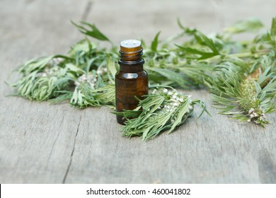 motherwort essential oil container with motherwort flowers on wooden background