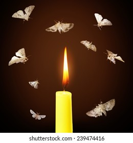 Moths and candle burning light