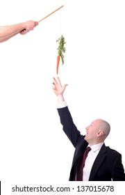 motivation of dangling a carrot on a stick isolated on white