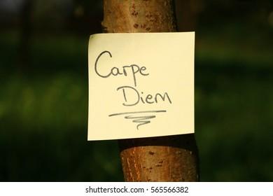 Motivation message Carpe diem (seize the day)