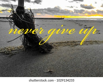 """Motivation Picture """" never give up"""" in front of the ocean with a lot of sand. Netherland coast"""