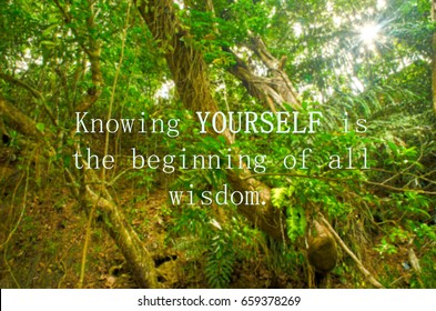 """Motivation quotes """"knowing yourself is the beginning of all wisdom"""". Blurred background."""