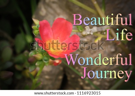 Motivational Inspirational Quotes Beautiful Life Wonderful Journey