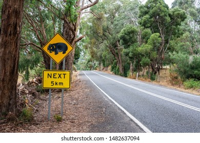Motor road in Australia with 'Wombat Crossing. 5km' road sign.