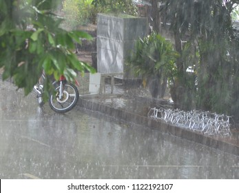 A motorbike has been left by the side of the street in a tropical downpour. It is half-hidden by the leaves of a tree. A bike rack is nearby.