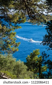 Motorboats through the woods of Rab Island, Croatia