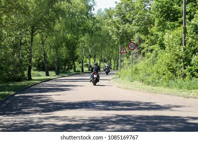 Motorcyclists drive through the birch avenue
