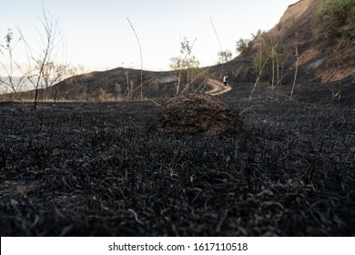 A mound of land surrounded by burnt grass with a hiking trail