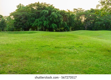 Mound in a park. There are grasses covering it.
