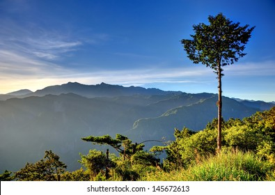 Mount Ali Sunrise with a tree and mountain