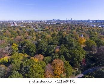 Mount Auburn Cemetery and Boston skyline in fall, Watertown, Greater Boston Area, Massachusetts, USA.