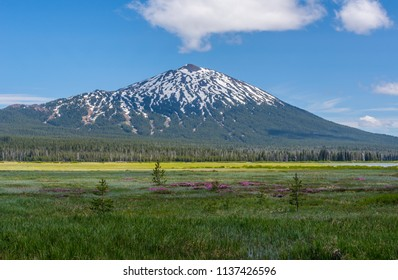 Mount Bachelor photographed in late spring from across a marsh at the north end of Sparks Lake, one of the lakes on the Cascade Lakes Scenic Byway near Bend, Oregon.