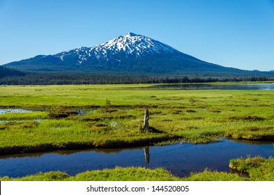 Mount Bachelor viewed from a lush green meadow in Central Oregon