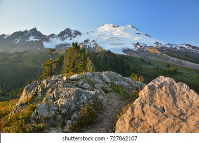 Mount Baker from Park Butte Lookout