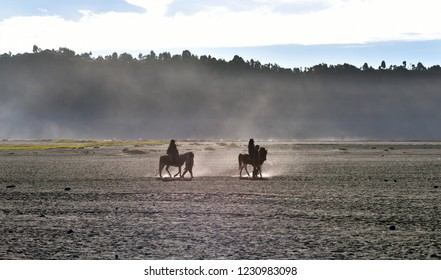 Mount Bromo, horsemen spending time with his horse and waiting for tourists, Indonesia, Java Island