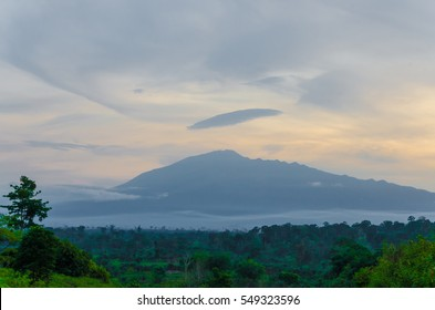 Mount Cameroon in the distance during evening light with cloudy sky and rain forest, Africa