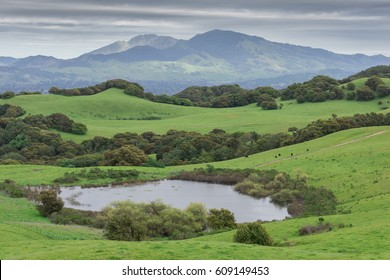 Mount Diablo from Briones Regional Park. Contra Costa County, California, USA.
