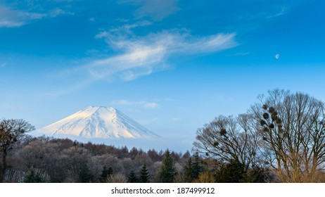 Mount Fuji, after the heavy snow storms in the past 120 years in 20 February 2014
