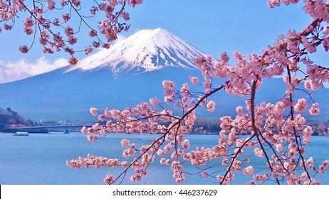 Mount Fuji Images Stock Photos Vectors Shutterstock