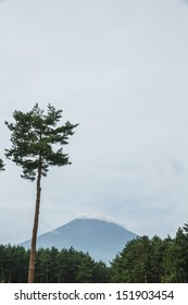 Mount Fuji during the summer with no snow cover.