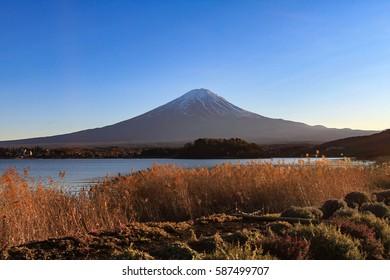 Mount Fuji in the early morning with the lake kawaguchiko