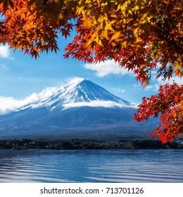 Mount Fuji, Japan from Lake Kawaguchiko in Autumn.