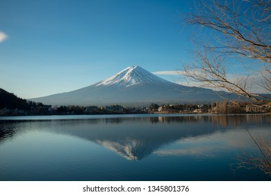 Mount Fuji with leaves that are shed