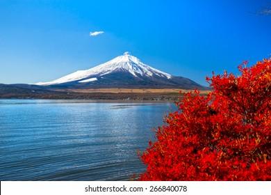 Mount Fuji reflected in Lake Yamanaka with fall colors, Japan.