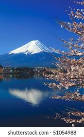 Mount Fuji and Sakura or Cherry Blossoms at Lake Kawaguchi, Japan