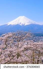 Mount Fuji and Sakura in Springtime