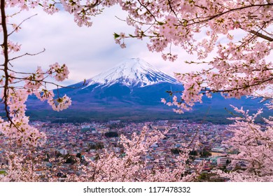 Mount Fuji.Foreground is a cherry blossoms.The shooting location is Fujiyoshida City, Yamanashi Prefecture, Japan.