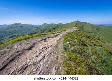 Mount Halicz seen from mount Rozsypaniec in Bieszczady National Park, Subcarpathian Voivodeship of Poland