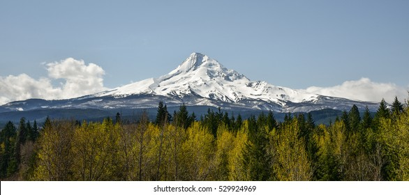 Mount Hood, Oregon's highest mountain, basks in the sun. Mount Hood is a year-round destination for many types of outdoor activity.