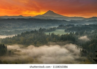 Mount Hood over foggy Sandy River Valley at Jonsrud Viewpoint during sunrise