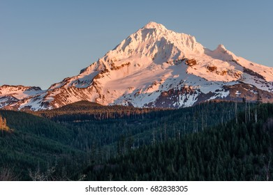 Mount Hood with snow cover and forested foot hills