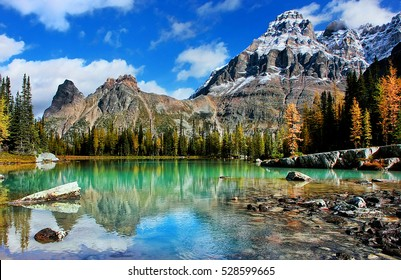 Mount Huber and Opabin Plateau, Yoho National Park, British Columbia, Canada