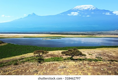 Mount Kilimanjaro in the African savannah Amboseli Park