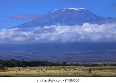 Mount Kilimanjaro on a beautiful morning, Tanzania, Africa