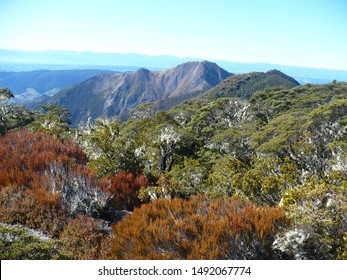 Mount Lodestone on the South Island of New Zealand is a peak on the Arthur Range in Kahurangi National Park rising to 1462 m.