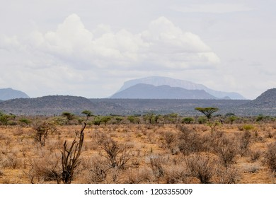 Mount Ololokwe seen from Samburu National Park, Samburu National Reserve, Kenya