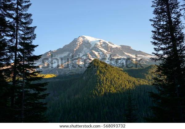 Mount Rainier Framed Between Two Pines