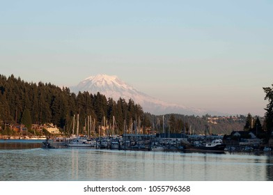 Mount Rainier looms large in the background of Gig Harbor's marina located in Washington State, USA.